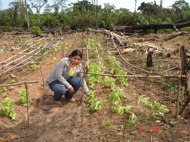 India (43) – Tuinbouwproject Nadu – geadopteerd door Melania groep Hilvarenbeek