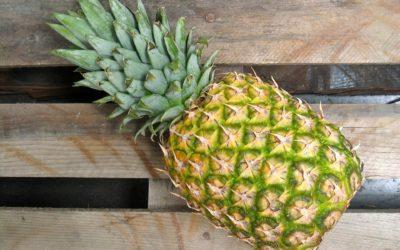 Verkoop gezonde vruchtensappen op de markt (Bolivia)