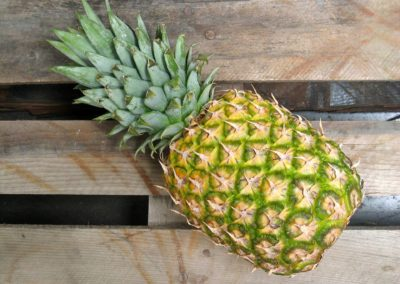 Bolivia (5) – Verkoop gezonde vruchtensappen op de markt – gefinancierd uit individuele giften