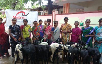 Leiderschapstraining voor vrouwen (India)