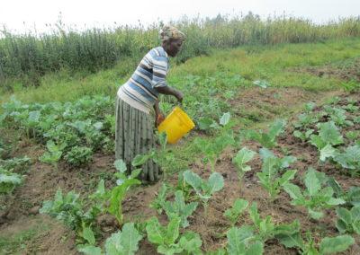 Kenia (24) – Irrigatiesysteem op zonne-energie – nalatenschap door mw. Terwijn