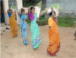 India (50) – Bamboevlechterij – in behandeling