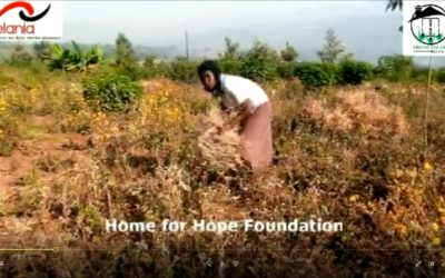 Video Home for Hope Foundation